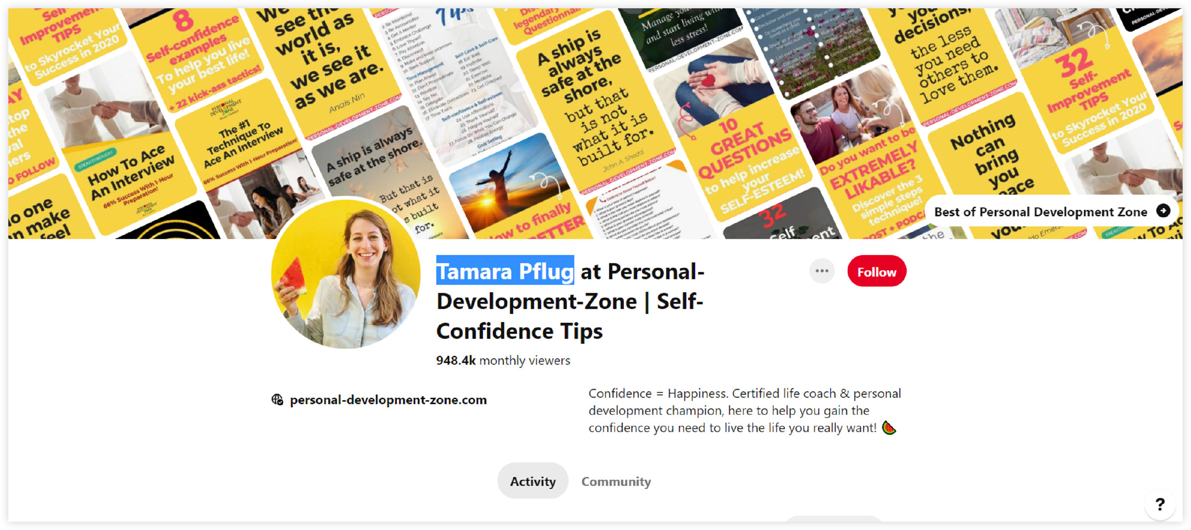 tamara pflugs pinterest profile page