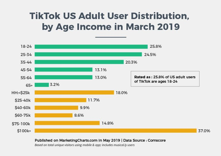 statistics on US tiktok user based on age and income