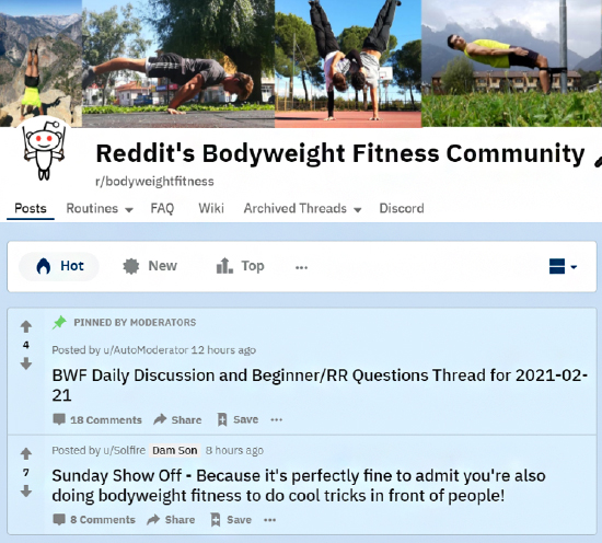 Reddit body weight fitness discussion group example