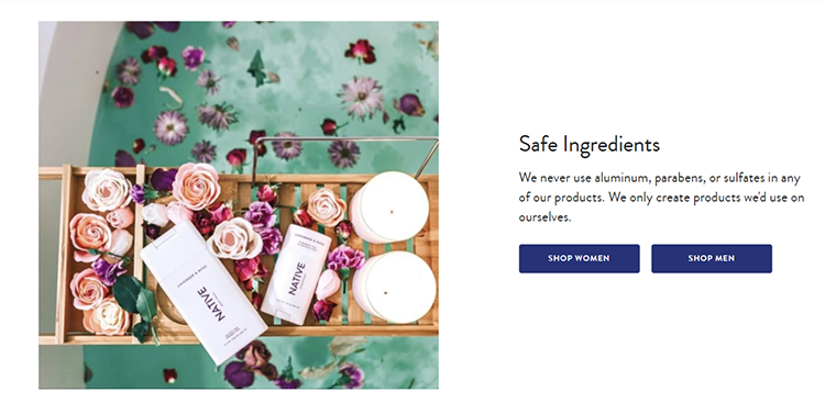 Ecommerce website homepage, call to action with an emphasis on safe ingredients.