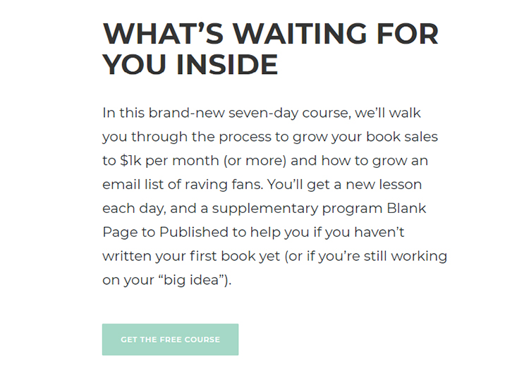 """Nick Stephenson's """"$0 to $1k Per Month"""" Lead magnet additional information."""